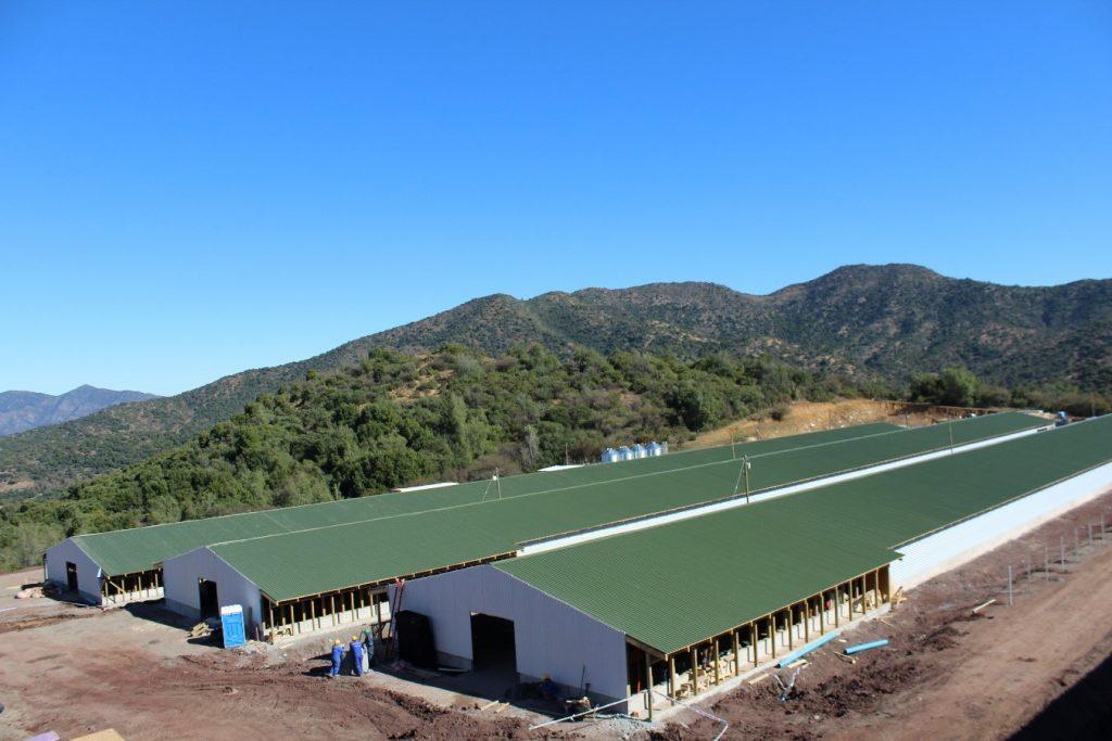 Mejora tecnológica de  Grupos de Producción de Reproductoras de aves, sector Coya 7, propiedad de Agrícola Super Limitada