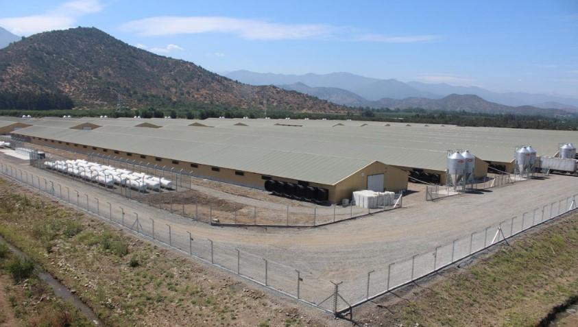"""Término de obra denominada """"Desarrollo y Mejoramiento Tecnológico Plantel de Aves Santa Teresa"""""""